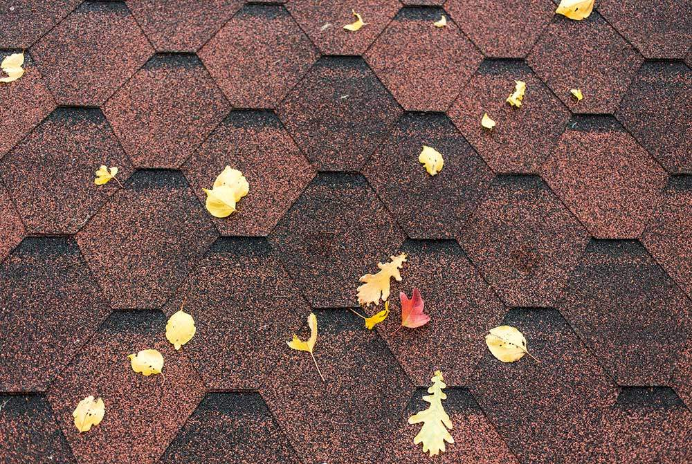 Composite-Roof-with-Autumn-Leaves