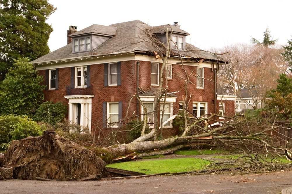 Beautiful old home struck by fallen tree, damaged roof